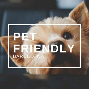 Pet Friendly Barcelona