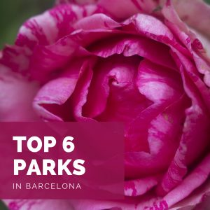 Top 6 Parks in Barcelona - Park Güell is overrated!